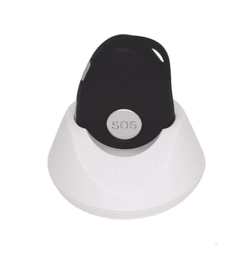 Nirbi noir sur son socle